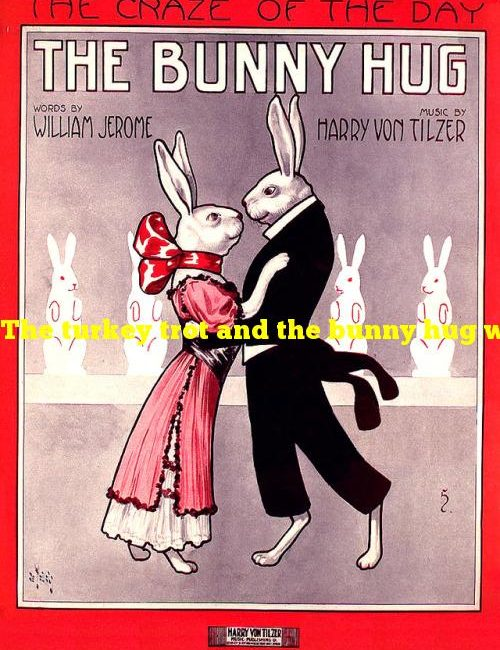 The turkey trot and the bunny hug were once popular types of what?