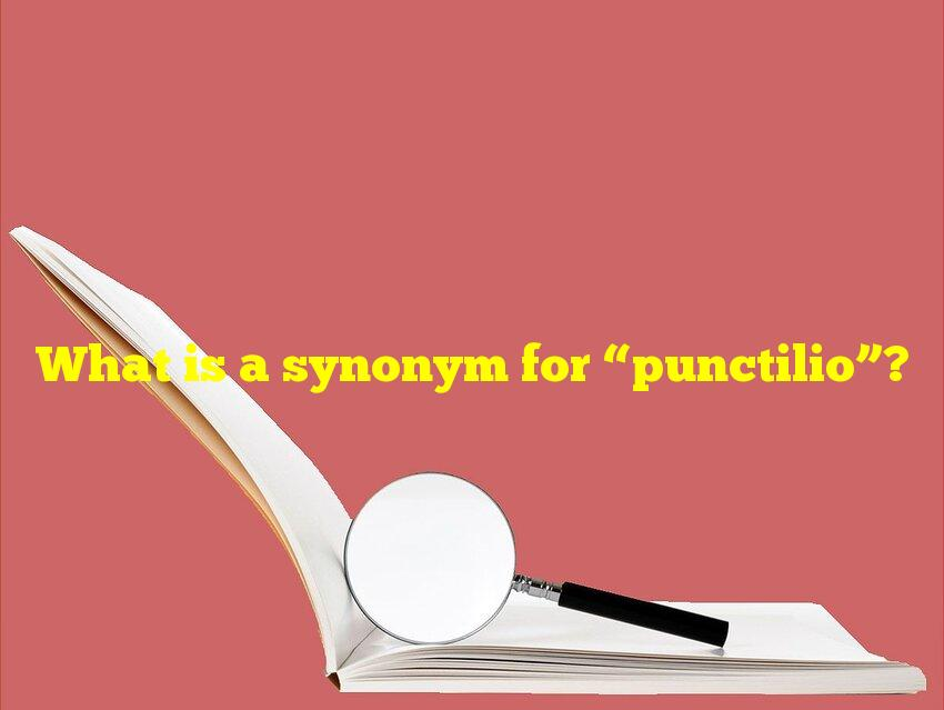 """What is a synonym for """"punctilio""""?"""